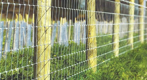 Cheap Agricultural Fencing Supplies