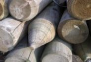 Round Fence Posts and Stakes