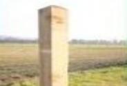Field Gate Posts